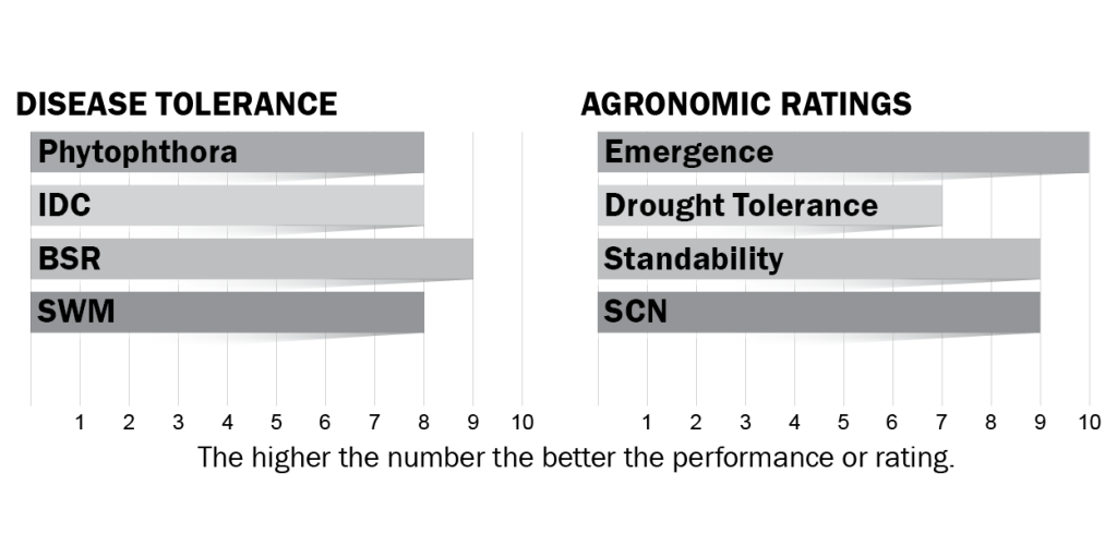 Disease tolerance and agronomic ratings for H03X8