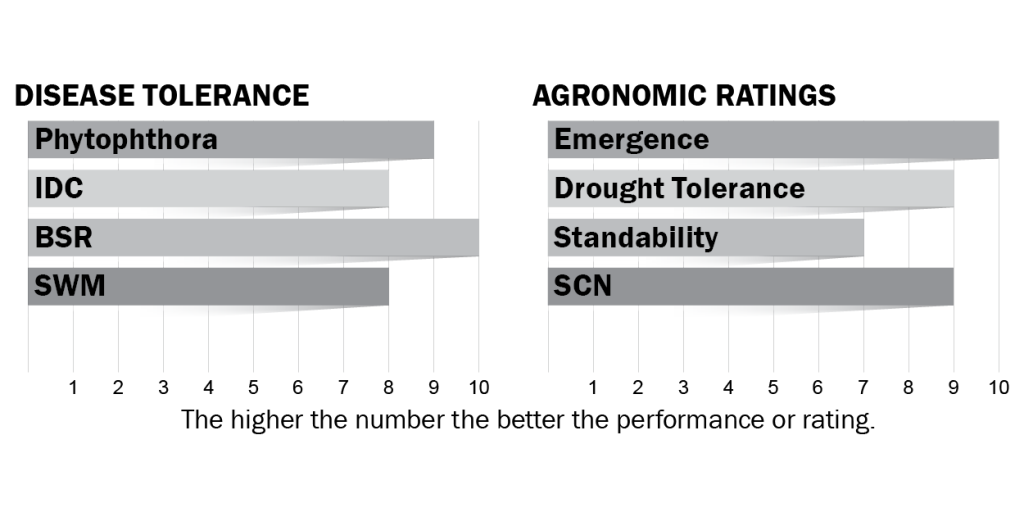Disease tolerance and agronomic ratings for H06X8