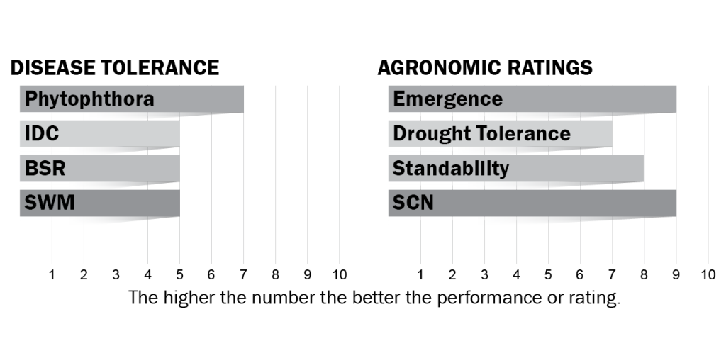 Disease tolerance and agronomic ratings for H09X1