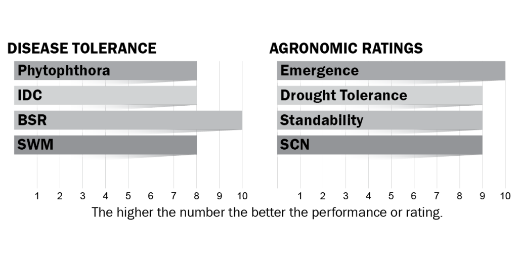 Disease tolerance and agronomic ratings for H11X8
