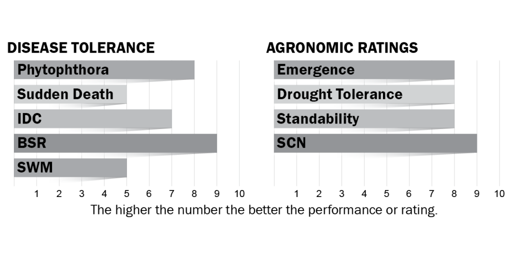 Disease tolerance and agronomic ratings for H25X8