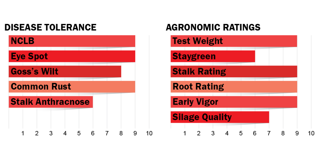 disease tolerance and agronomic ratings for H3202