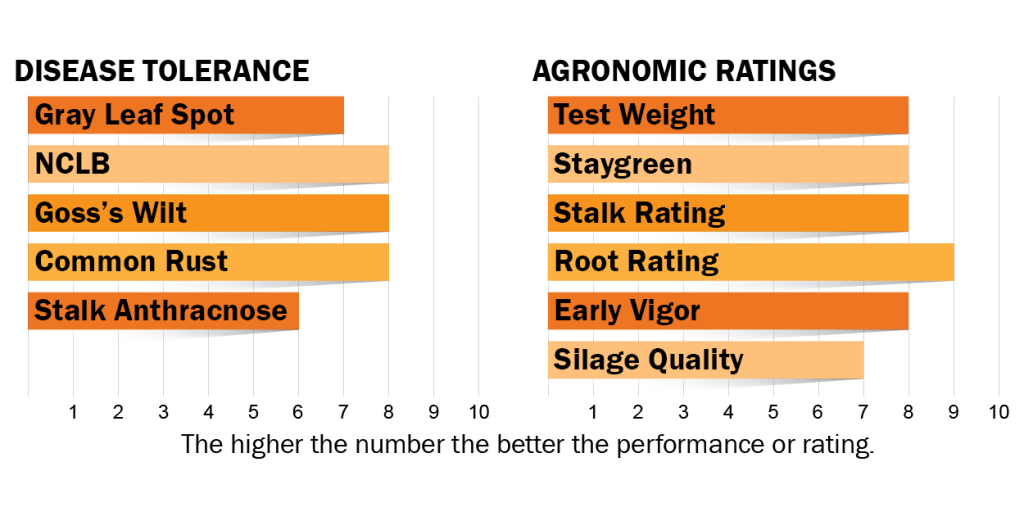 Disease tolerance and agronomic ratings for H3521
