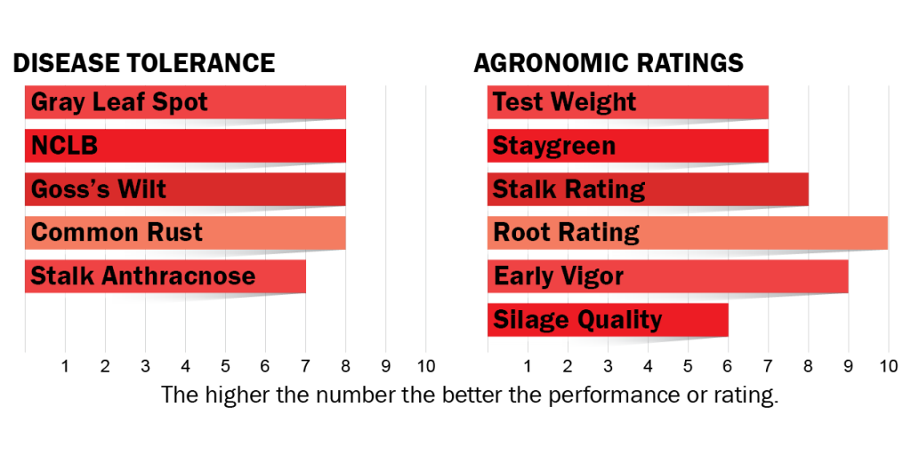 Disease tolerance and agronomic ratings for H4032