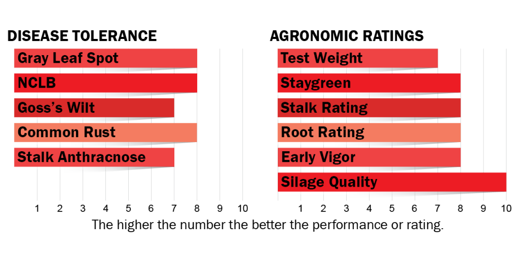 Disease tolerances and agronomic ratings for H4132
