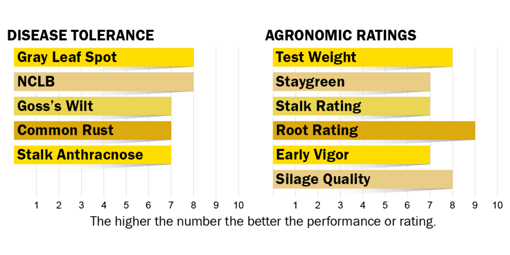 Disease tolerance and agronomic ratings for H5010