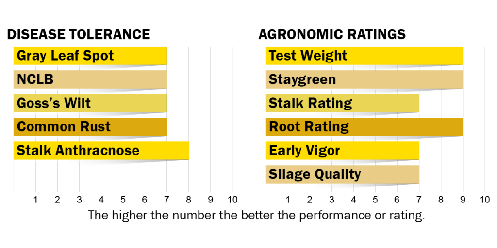 Disease tolerance and agronomic ratings for H5020