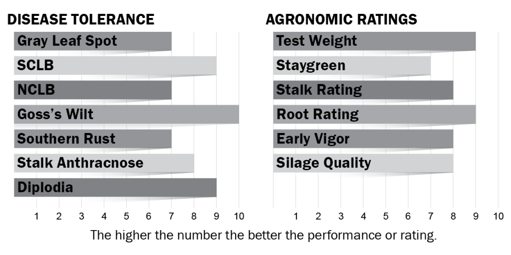 Disease tolerance and agronomic ratings for H5024