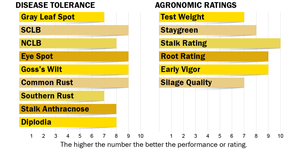 Disease tolerance and agronomic ratings for H5030