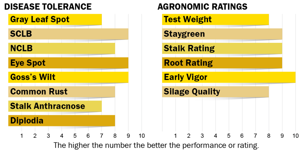 Disease tolerance and agronomic ratings for H5230