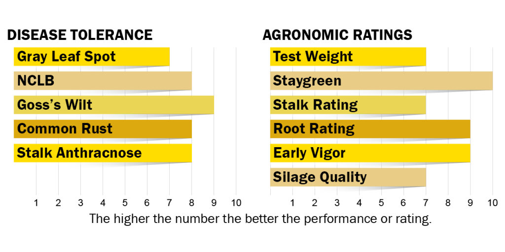 Disease tolerance and agronomic ratings for H5320