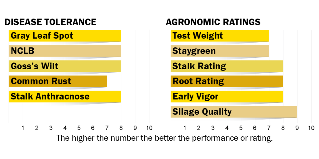 Disease tolerance and agronomic ratings for H5520