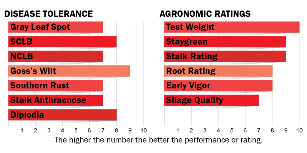 Disease tolerance and agronomic ratings for H5522