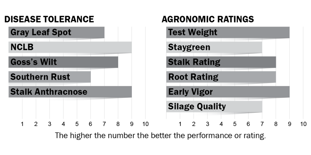 Disease tolerance and agronomic ratings for H6024