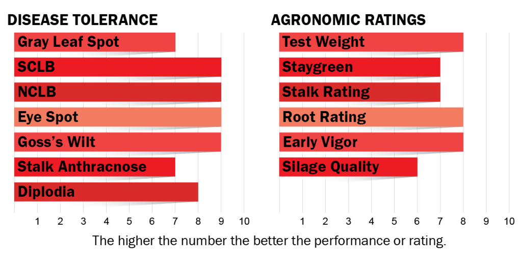 disease tolerance and agronomic ratings for H6102