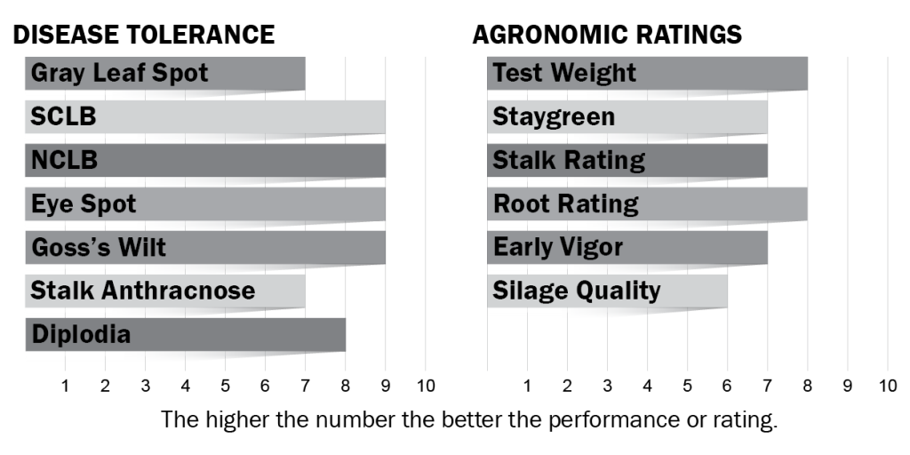 Disease tolerance and agronomic ratings for H6104