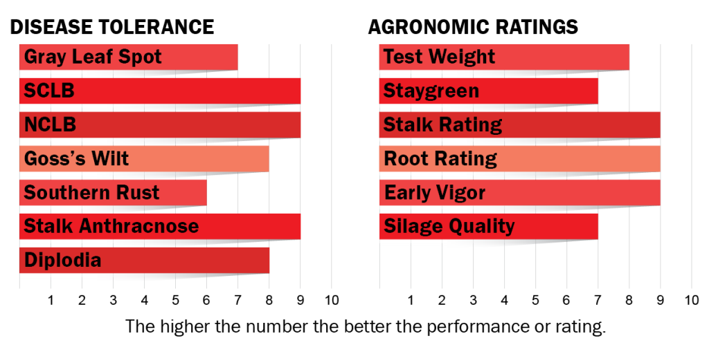 Disease tolerance and agronomic ratings for H6532