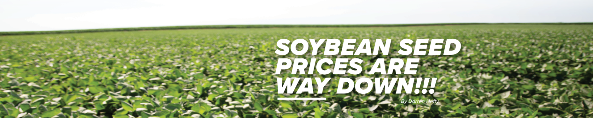 Soybean Seed Prices are Way Down magazine article header image.