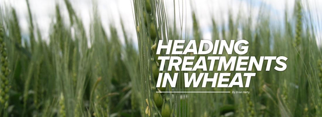 Heading Treatments in Wheat