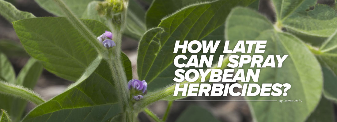 How late can I spray soybean herbicides