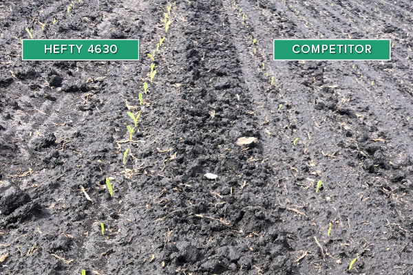 Hefty Brand Corn 4630 Treated with Hefty Complete Seed Treatment compared to competitor seed.