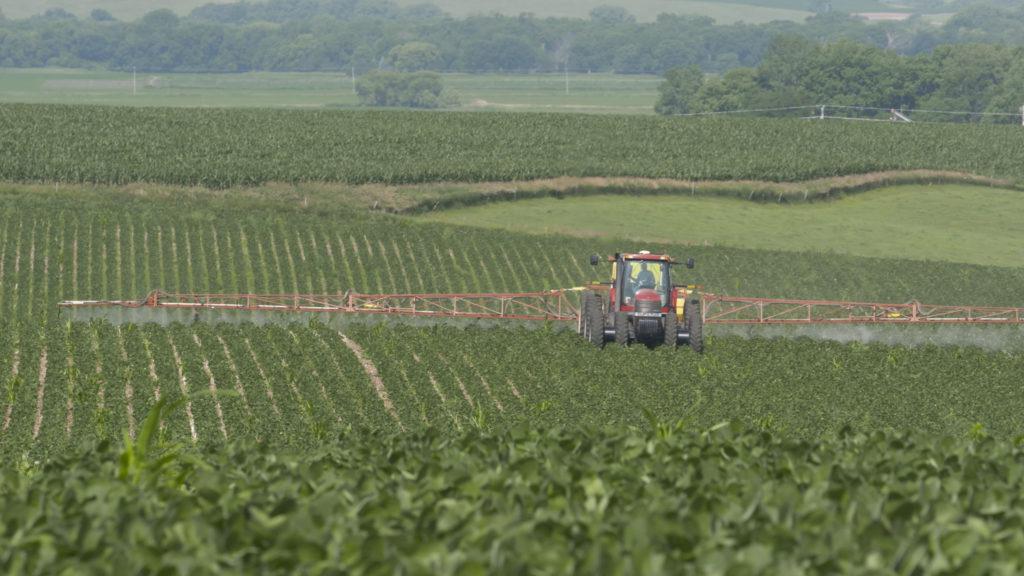 Spraying early season soybeans