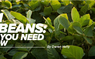 Agronomy. Answers. Yield. Aug/Sept 2020 Mobile Article Header 2021 Soybeans what you need to know