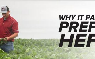 Mobile Header Image of Agronomy. Answers. Yield. August 2020 article Why it Pays to Prepay with Hefty's