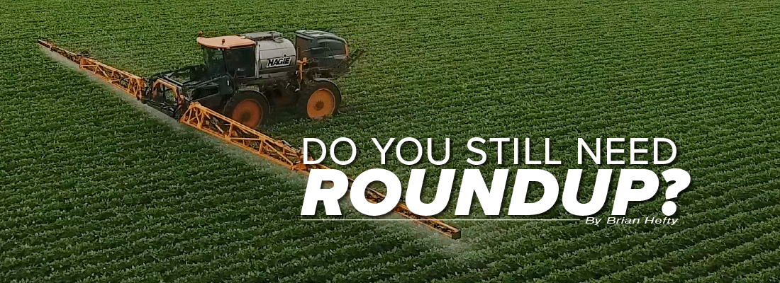 Do you still need Roundup mobile article header image