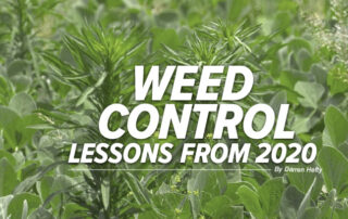Weed Control Lessons from 2020 Mobile Article Header Image