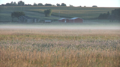 Fog shown in a low lying area