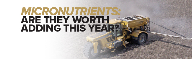 Article Header Image: Micronutrients - are they worth adding this year?
