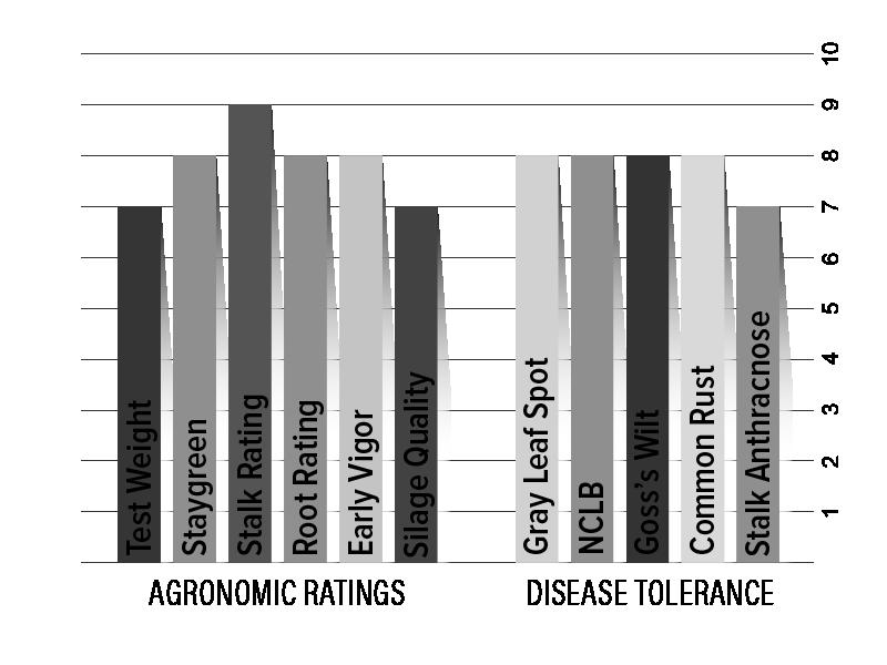 H3131 Agronomic Chart