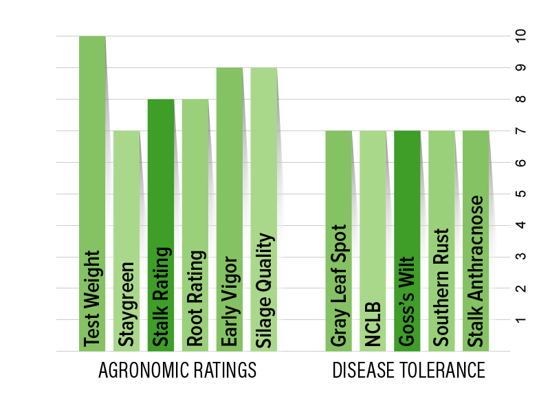 H4653 Agronomic Chart