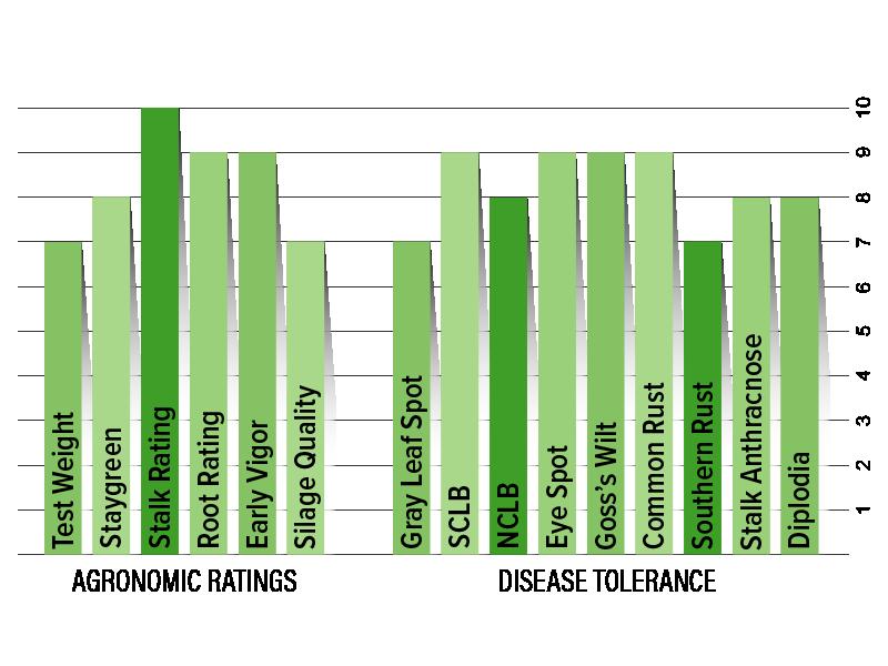 H5003 Agronomic Chart