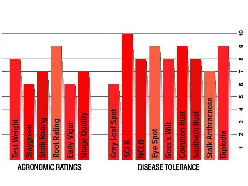 H5302 Agronomic Chart