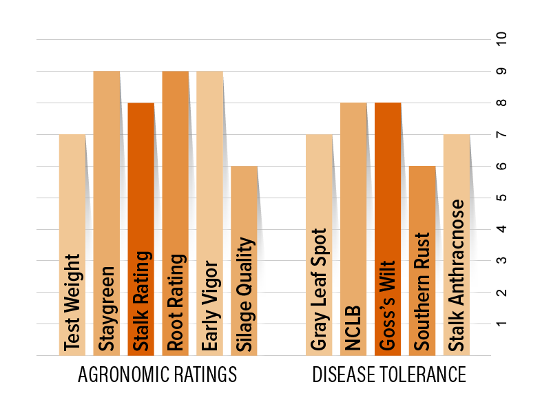 H5655 Agronomic Chart