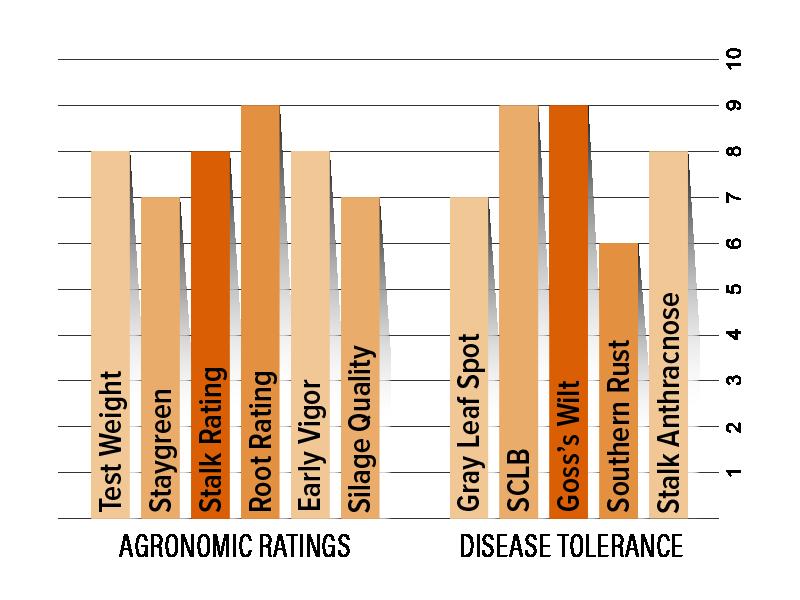 H6145 Agronomic Chart